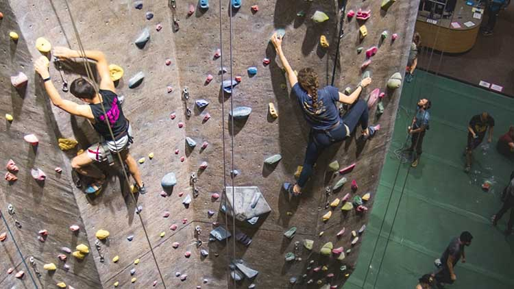 best-climbing-holds